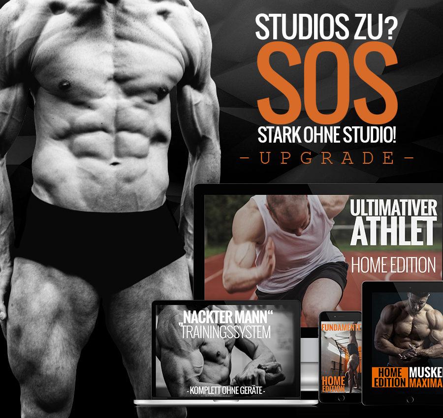 Stark Ohne Studio Homeworkouts ohne Fitnessstudio